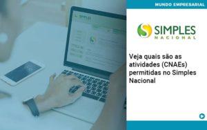 Veja Quais São As Atividades (cnaes) Permitidas No Simples Nacional - Abrir Empresa Simples