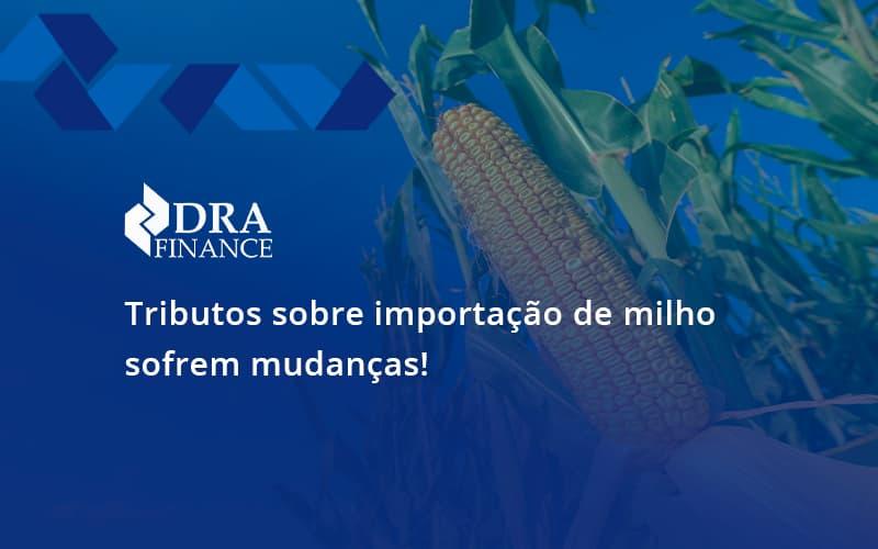 Tributos Sobre Importação De Milho Sofrem Mudanças! Dra Finance - DRA Finance